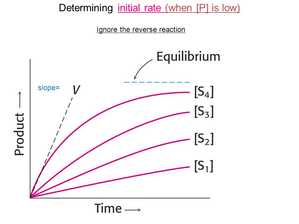 Determining initial rate (when [P] is low)